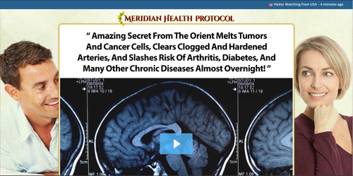 Meridian Health Protocol Book