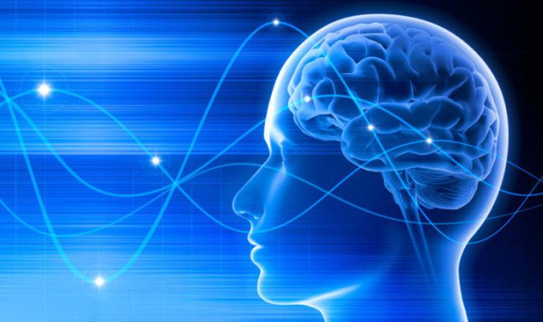 Mind System Secrets - Is It Scam?