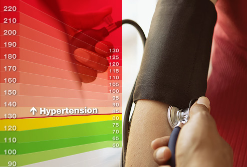 The High Blood Pressure Handbook Review