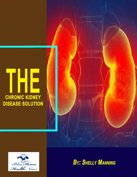 The Chronic Kidney Disease Solution Book - Worth It?
