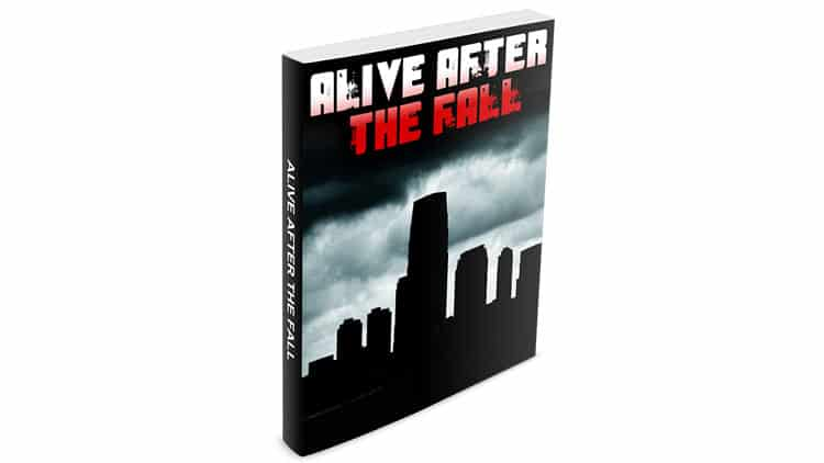 Alive After The Fall 3 PDF