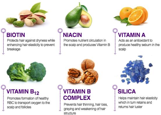 NutraGrow Biotin Ingredients