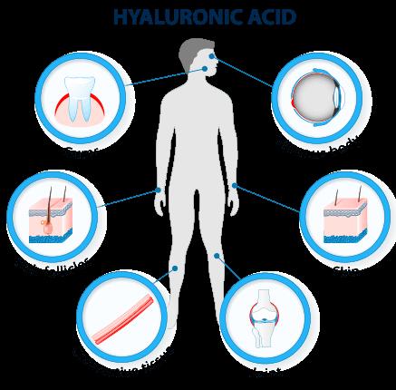 JayLab Pro Complete Collagen Complex