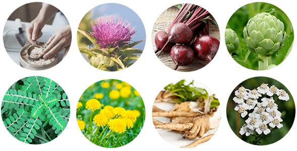 Oweli Liver Detox Ingredients