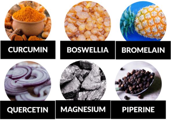 Golden Revive Plus Ingredients